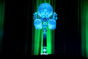 Toronto Wedding Lighting Decor 6