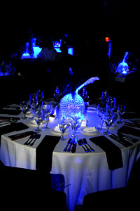 Wedding Lighting Decor Toronto 7