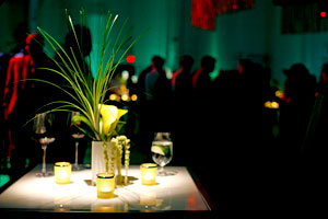 Toronto Wedding Lighting Decor 9